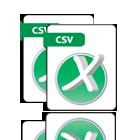 CSV Report